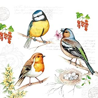 Ambiente 3-Ply Printed Paper, Tissue Napkins - Birds on Twig, Pack of 20 33 x 33cm