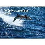 Delphinzauber · DIN A3 · Premium Kalender 2019 · Tauchen · Delphin · Delfin · Fische · Meer · Geschenk-Set mit 1 Grußkarte und 1 Weihnachtskarte · Edition Seelenzauber