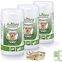 Anti Garrapatas para Perros Grandes (35-50 kg) - 3 x 60 cápsulas (Pack Ahorro) | Producto 100% Natural | Vitamina B Anti Garrapatas