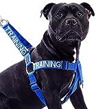 ABRICHTUNG Training Blau Farbkodiertes Nylon Nicht Ziehen Vorderseite Rückseite Ring Große L-XL-Hundegeschirr  (Bitte nicht stören) verhindert Unfälle durch Warnung Sonstige Ihren Hund im Voraus