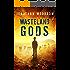 Wasteland Gods