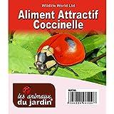 La semeuse PFAJCAL - Atractiva mariquita néctar