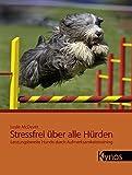 Stressfrei über alle Hürden: Leistungsbereite Hunde durch Aufmerksamkeitstraining