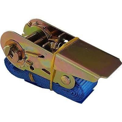 Spanngurt mit Ratsche und Spitzhaken Zurrgurt Spanngurt 800 kg 1 Meter für LKW Anhänger PKW im Sparset Stück (6)
