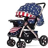 Zusammenklappbares Luxus-Kinderwagen-Reisesystem mit Anti-Schock-Federn Neugeborenen-Kinderwagen Verstellbarer Kinderwagen-Reisesystemwagen für Kinderwagen