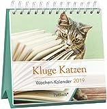 Kluge Katzen - Mini-Kalender 2019: Wochenkalender zum Aufstellen m. Fotos u. Zitaten, Spiralbindung, 10,5 x 10,5 cm