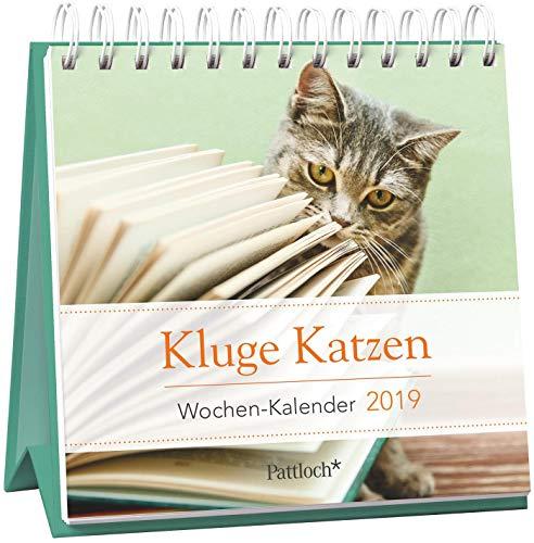 Kluge Katzen - Mini-Kalender 2019: Wochenkalender zum Aufstellen m. Fotos u. Zitaten, Spiralbindung, 10,5 x 10,5 cm (Tischkalender Katzen)