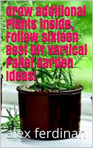 Grow additional Plants inside, Follow sixteen Best DIY Vertical Pallet Garden Ideas!