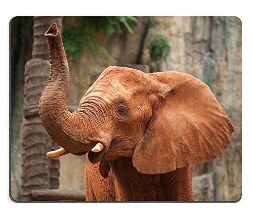 Yanteng Caucho Natural Gaming Mouse Pad Mouse Mat Gran Elefante Africano Loxodonta...