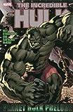 Hulk: Planet Hulk Prelude (Graphic Novel Pb)