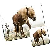 Poni y poni alfombrilla de ratón/Pad y posavasos Pony Walking On Frozen Pasture