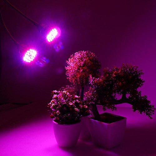 ... Lampada Per Piante Da Interno Con Clip Per Serra/ Laboratorio/  Giardino. Visualizza Le Immagini