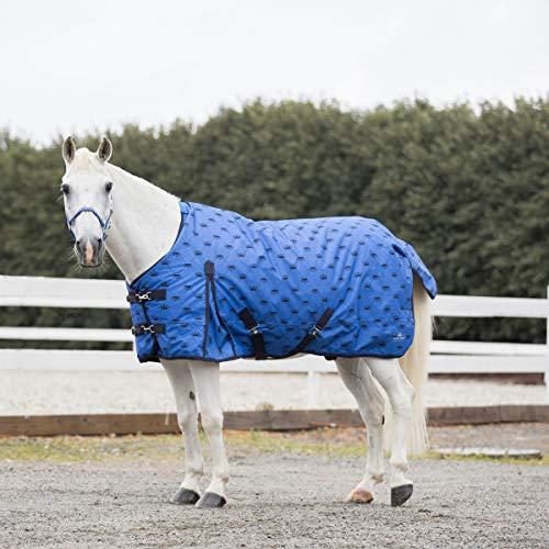 netproshop Pferde Regendecke 600D für Winter Gefüttert Auswahl, Groesse:125, Farbe:blau