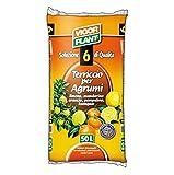 Vigor Plant Terriccio per agrumi - Limone mandarino arancio pompelml - 50 lt