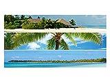GRAZDesign 991007_90x57 Sichtschutzfolie Strand/Palmen | Fensterfolie zur Deko und Sichtschutz | blickdichte Glasdekorfolie (90x57cm)