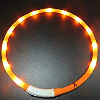 Ttimao LED Collar para Perros,USB Ajustable Recargable Impermeable LED Seguridad Parpadea Collar (Naranja, Medio)