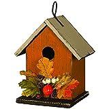 Carson Bird Houses - Best Reviews Guide
