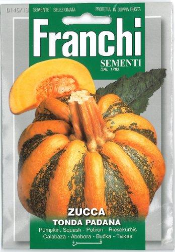 Franchi Graines de citrouille de squash???Zucca Tonda Padana