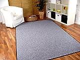 Feinschlingen Velour Teppich Strong Silbergrau in 24 Größen