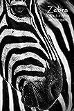 Zebra in Black & White 2020 Planner: Weekly Monthly Agenda Schedule Calendar