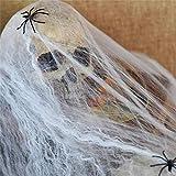 Berrose -2 Stück Dehnbares Spinnennetz Cobweb Prop für Halloween Hausbar-Party Festival Dekoratione-Leuchtet im Dunkeln Fake-Spinnen Dekorationen Im Haus Draußen Leuchtet
