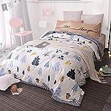DMMW-Home Bettwäsche Klimaanlage Quilt Summer Washed Sommer Cool Thin Quilt - All Seasons Thin Quilt für Erwachsene und Jugendliche Bettwäsche Winter Sommer (Größe : 180 * 215cm)