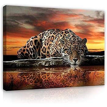 Amazon.de: Bild auf Leinwand Raubkatzen - Panther