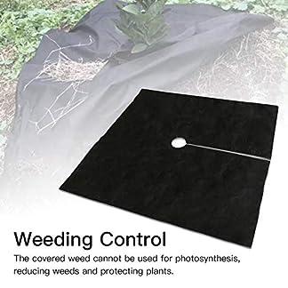windyday Cubierta de protección contra malezas Transpirable e hidratante – Cubierta de Suelo para Control de malezas – Tela de Hierba de huerto no Tejida 10PCS Custody