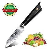SHAN ZU Damascus Steel Knife