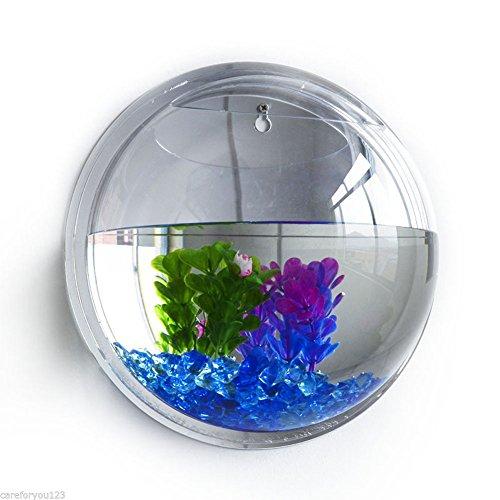 Walmics vaso rotondo da parete in acrilico trasparente per acquario, vaso da fiori, decorazione da appendere alla parete per pesci, acquario, vaso decorativo per piante idroponiche