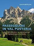 Passeggiare in Val Pusteria. 136 escursioni in montagna provate dall'autore (Guide d'autore - goWare)