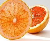 Produkt-Bild: amorebio Bio Grapefruit rot (1 x 1 Stk)