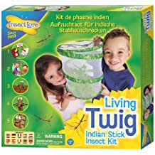 Living Twig Stick Insect Kit (SENT WITH EGGS NOT VOUCHER!)