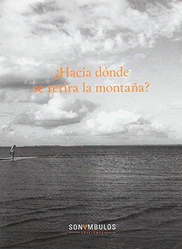 Descargar Libro Hacia donde se retira la montaña (Colección Valparaíso Arte) de Carmen Rivero