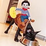 Disfraz divertido para perro de Halloween, chubasquero (pequeño)