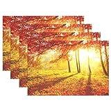 Wamika Ahorn-Tischset, Herbstbäume und Blätter, Rutschfest, fleckenabweisend, 30,5 x 45,7 x 2,5 cm, 1 Stück 12x18x4 in Mehrfarbig