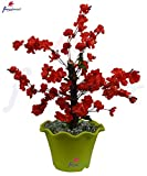 #8: Thefancymart Artificial Tree Blossoms (size 1.5 ft /18 inchs/ 45 cms) without pot-1252