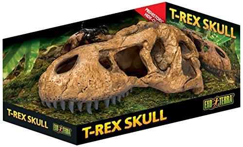 Exo Terra PT2859 T-Rex Schädel