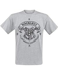 Harry Potter Hogwarts Camiseta Gris/Melé