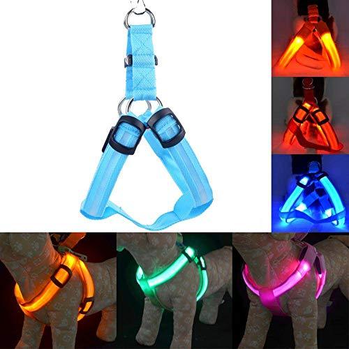 Pet Protector Nylon LED Halsband Harness Weste Hundegeschirr Sicherheit beleuchtete Zubehör (Farbe : Rot, Größe : S) (Nylon Sicherheits-weste)