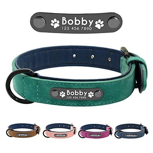Didog - Collar de piel suave acolchada personalizable para perro, chapa de nombre, anillo en D,...