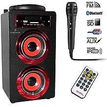 Samphone - Altavoz Bluetooth Karaoke 10W BT-J8KB, Radio FM, MP3 y Manos Libres