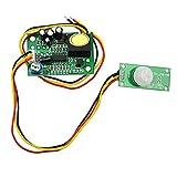 Demarkt TDL-758 Einstellbare Verzögerungs 12V menschliche Körper Sensormodul Werbung Leuchtkästen LED-Lampen menschliche Körper Sensor Schalter