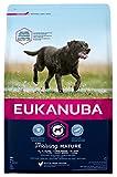 Eukanuba Mature Trockenfutter für große Rassen – Hundefutter mit neuer und verbesserter Rezeptur für reife Hunde von 6-9 Jahren in der Geschmacksrichtung Huhn – 1 x 3kg Beutel