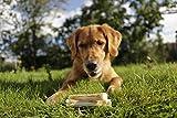 8in1 Delights Kausticks (gesunder Kausnack für Hunde von 2 bis 35 kg, hochwertigem Hähnchenfleisch), 3 Stück (75 g) - 4