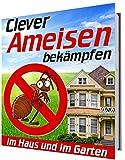 Clever Ameisen bekämpfen: Im Haus und im Garten