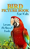 Bird Picture Book For Kids: Learn All About Birds