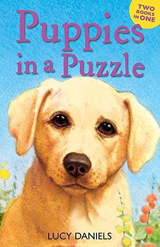 Puppies in a Puzzle (Dalmatian in the Dales & Labrador on the Lawn) (Animal Ark) by Lucy Daniels (2013-03-07)