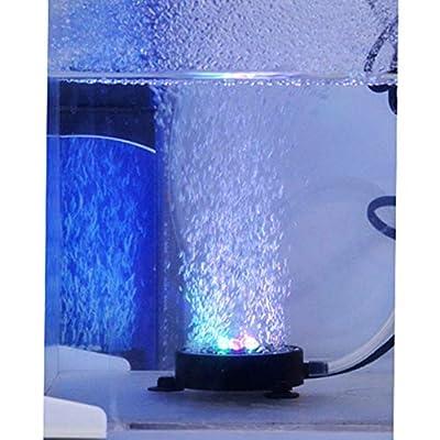 Xiton 7 Farben wasserdicht LED-Licht-Fisch-Behälter-Lampe Unterwasser-Mini-Aquarium beleuchtet Blase Belüften Disc Beleuchtung Aquarium dekorative Lampe US-Stecker