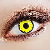aricona Farblinsen bunte Kontaktlinsen farbig für ein Vampir Kostüm farbige gelbe 12 Monatslinsen für deine Halloween Schminke
